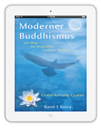 Moderner Buddhismus ebook auf iPad